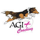 AGI PLUS Coaching